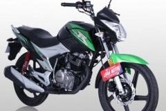 Внешний вид мотоцикла Lifan LF150-2E